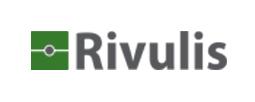 Rivulis